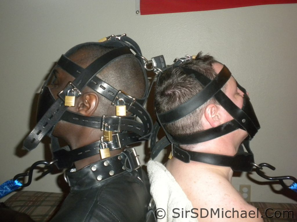 Muzzles locked together