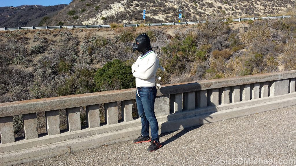 Sparky straitjacketed on old US 101 near Santa Barbara.